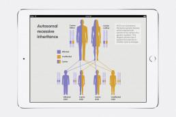 Autosomal inheritance MLD Support Association UK